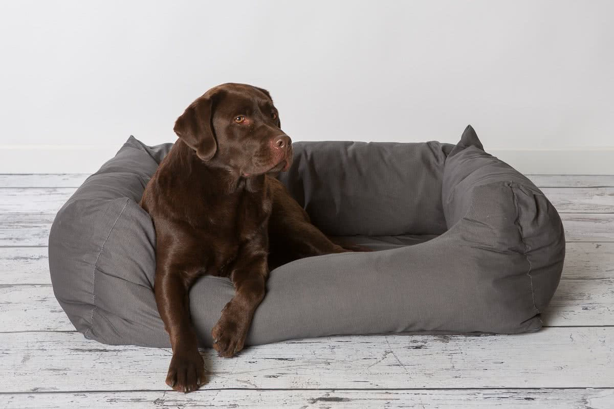 grijze hondenmand