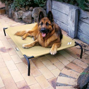 4Goodz Honden Ligbed Zand 130x80 cm