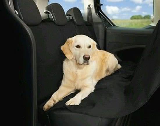 Basic Auto beschermhoes voor honden Zwart 135x145 cm