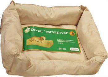 Boon Divan waterproof Beige 60x70 cm