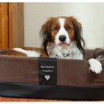 Doggybed-Orthopedische-Hondenmand-Paddy-Style-Bruin-55×42-cm-1