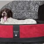 Doggybed-Orthopedische-Hondenmand-Paddy-Style-Rood-100×80-cm-1