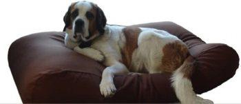 Dog's Companion Hondenkussen Bruin 95x140 cm