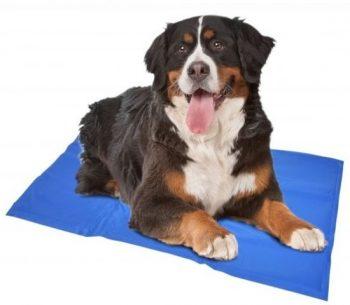 Duvo Koelmat Hond Blauw 90x50 cm