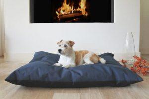 Frankie-Super-Dog-Hondenkussen-Antraciet-100×70-cm-1