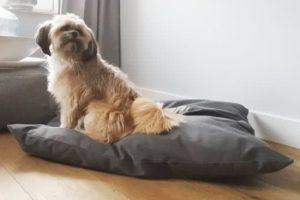Frankie-Super-Dog-Hondenkussen-Antraciet-70×100-cm-1