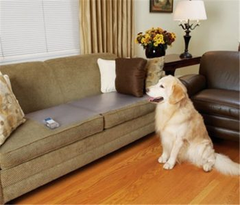 Onlinehondenspeciaalzaak Trainingsmat Hond Transparant 430x1220 cm