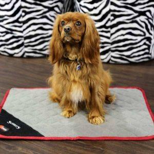 Scruffs Hondendeken Thermal Mat Zwart 60 x 45 cm