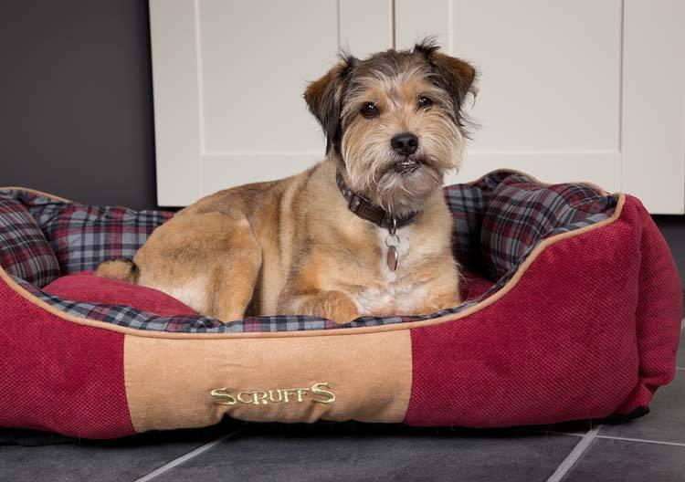 Scruffs Hondenmand Highland Rood 50 x 40 cm