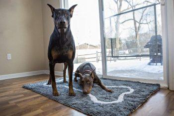 Soggy Doggy Droogloopmat Grijs met bot 66 x 91 cm