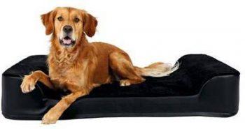 Trixie tonio vital orthopedisch ligbed Zwartafmeting: 110X80X20 Cmdit Ligbed Is Ook Verkrijgbaar In Een Kleiner Formaat 80x110 cm